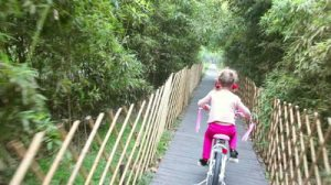 stock-footage-little-girl-on-bike
