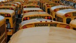 school-buses-300x172
