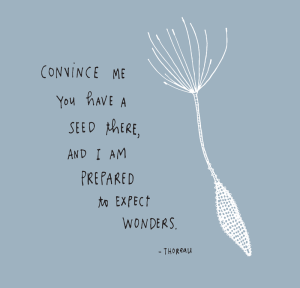 THOREAU-EXPECT-WONDERS